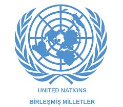 BM Irk Ayrımcılığı Komitesi;  Lozan Antlaşması diğer grupların azınlık olarak tanınmasını engellemez.